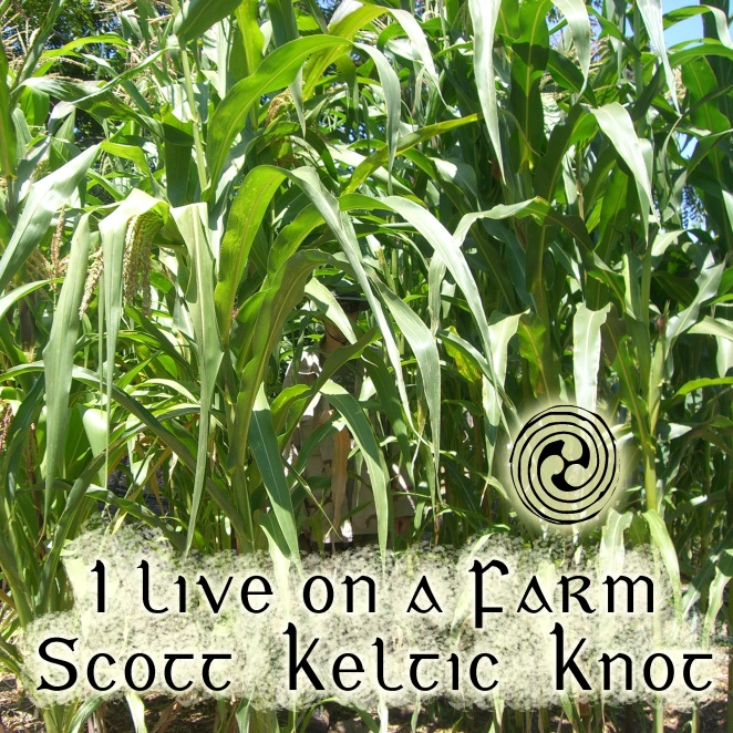 I Live on a Farm